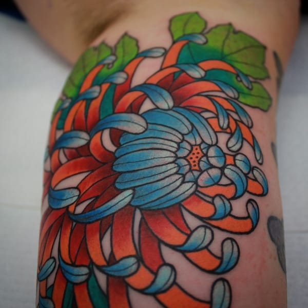 A beautifully colorful Chrysanthemum (IG @sashimi_roll_tattooing) #SashaMezoghlian