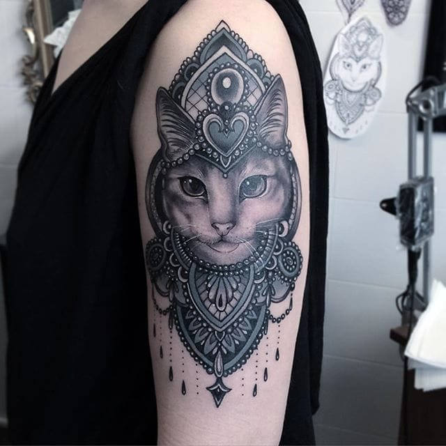 #blackandgrey #fancy #kitty #flonuttall