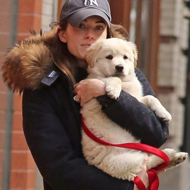 Allison Williams as Marnie Marie Michaels from Girls #girls #marniemariemichaels #alissonwilliams #marnie #dog #puppy #doglover