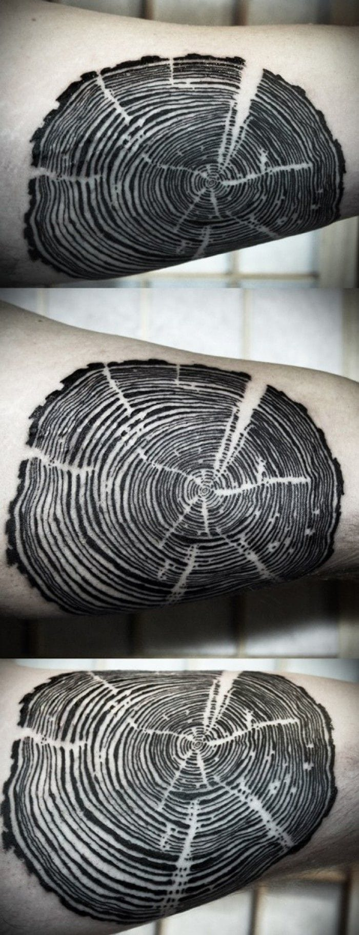 Nature is about tiny plants but also old and gigantic ones: trees! If you don't want the whole tree tattooed on you, get an original tattoo with this trunk cut. By David Hale.