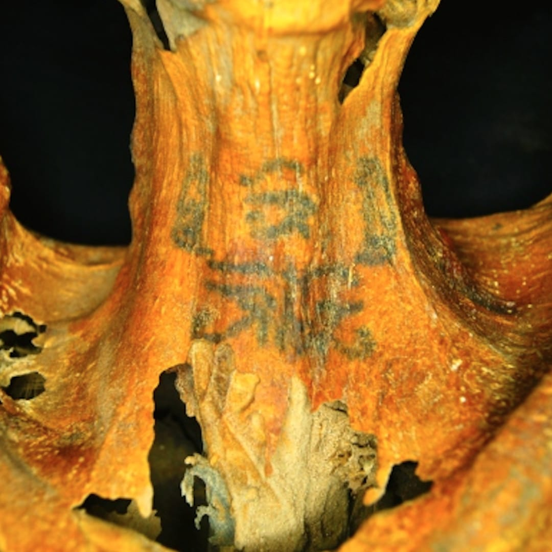3,000 Year Old Mummy Has Shit Ton of Tattoos, Is 100% Cooler Than You