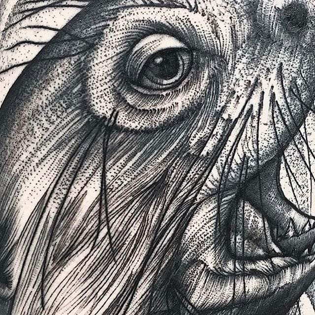 Beautiful, Detailed Blackwork Tattoos by Frank Carrilho