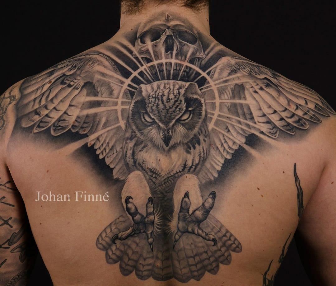 Johan Finné e uma coruja boladona!