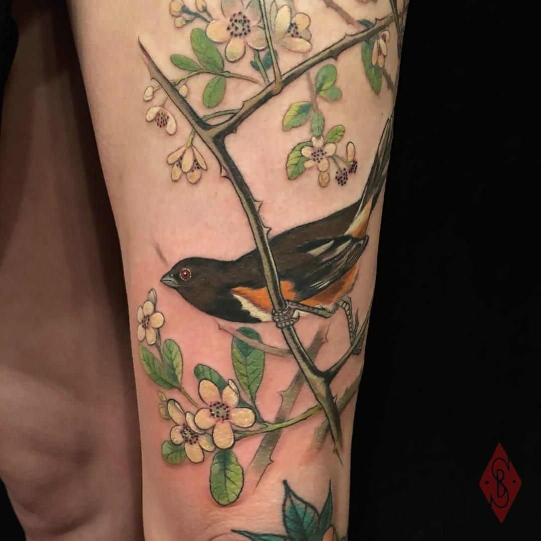 by Stephanie Brown