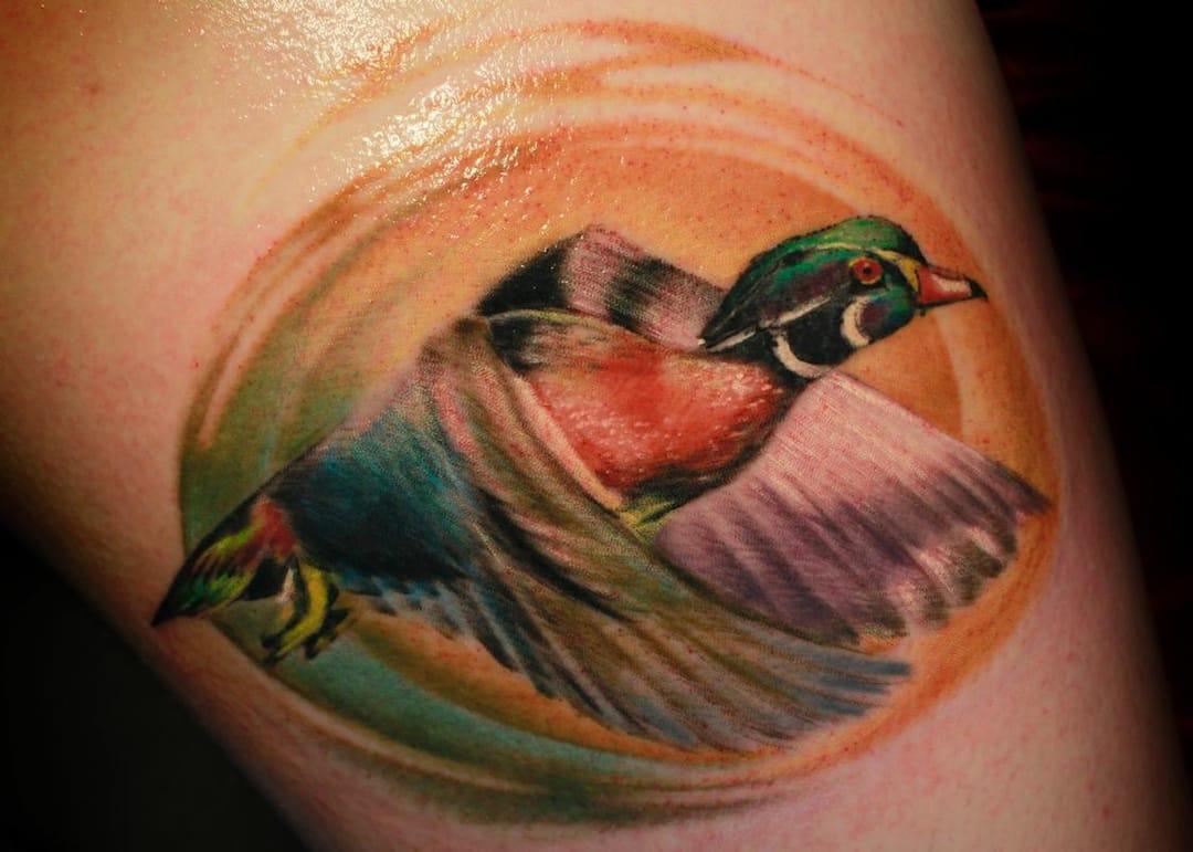 Wood duck in-flight by Steve Phipps